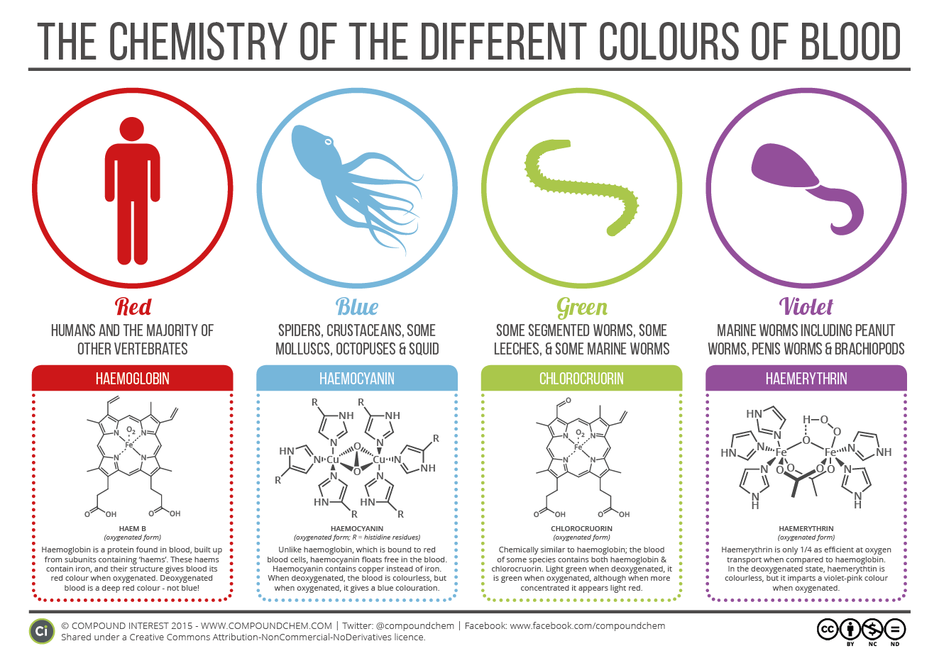 Chemistry-of-Blood-Colours-2015