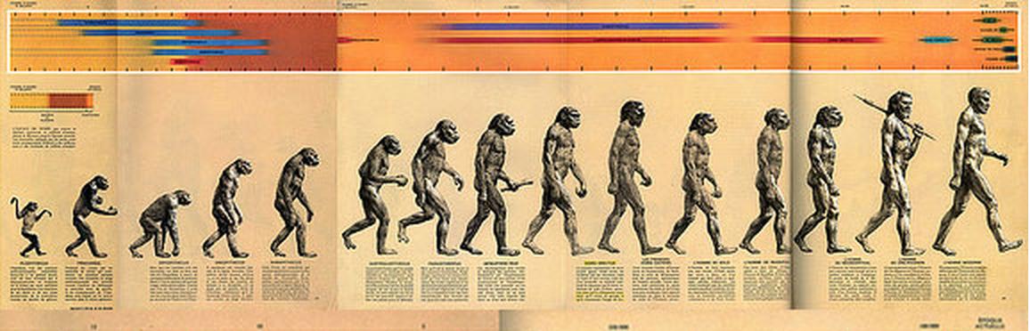 evolutia-omului-nu-e-liniara-imagine-originala