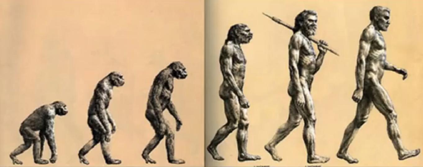evolutia-omului-nu-este-liniara-imagine-falsa