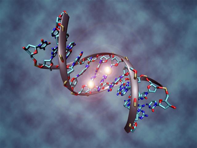 img-las-s3-01-DNA_methylation (Small)